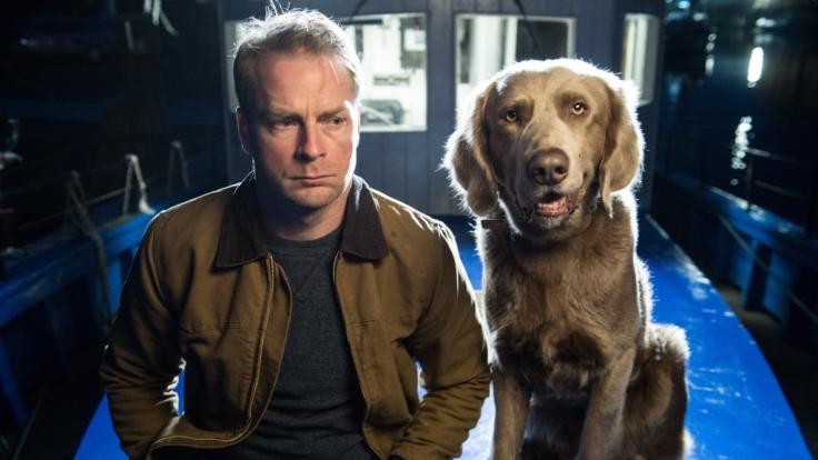 Gemeinsam am Grübeln: Tierarzt Hauke Jacobs und Hund Holly. (Foto)