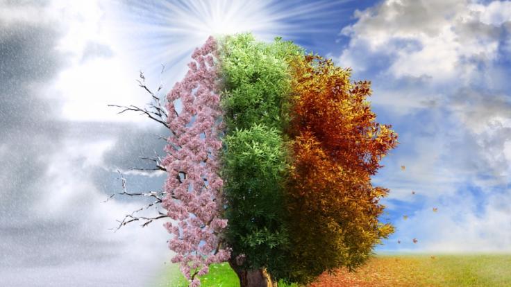 Welches Wetter prophezeit der Hundertjährige Kalender für 2020? (Foto)