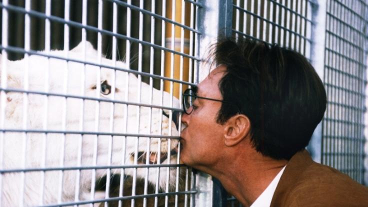Roy Horns Liebe zu den Wildkatzen war auch nach dem Tiger-Unfall ungebrochen. (Foto)