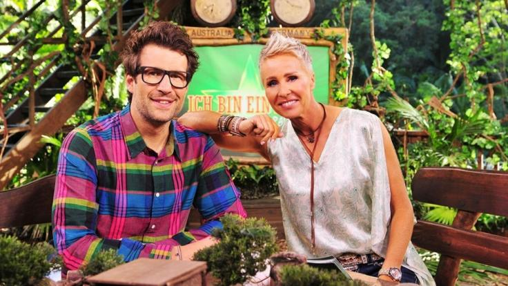 """Daniel Hartwich und Sonja Zietlow haben bei """"Ich bin ein Star - Holt mich hier raus!"""" schon so manchen Dschungelcamper leiden sehen. (Foto)"""