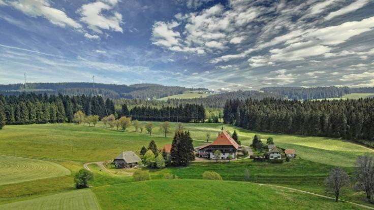 Der Schwarzwald ist für einen Urlaub mit der gesamten Familien auch wunderbar geeignet. (Foto)