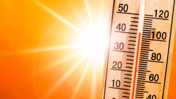 Drohen uns künftig immer mehr Hitzetote? (Foto)